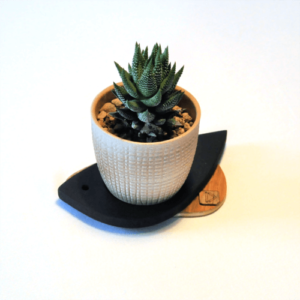 Support pour petite plante oiseau modèle Moineau. Couleur bois naturel et teinté noir.